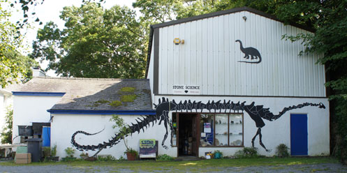 Dinosaur Museum on Anglesey